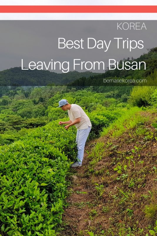 travel from busan to seoul