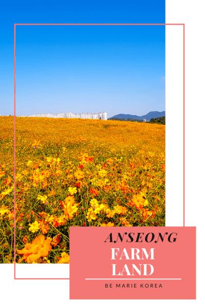 gyeonggido farmland