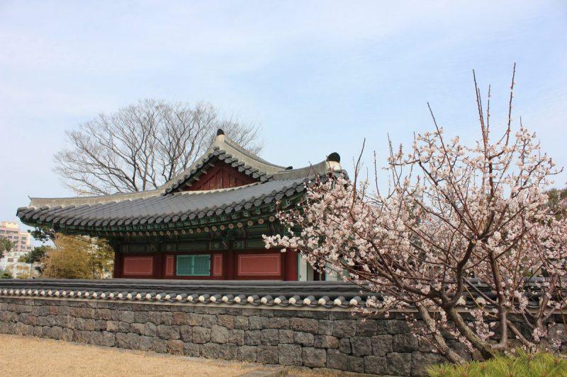 gyeongju south korea things to do