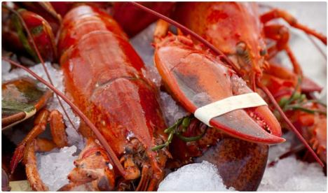 lobster is crazy high in iodine