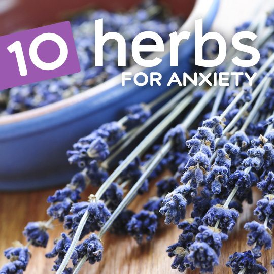 10 Natural Herbs for Anxiety and Stress