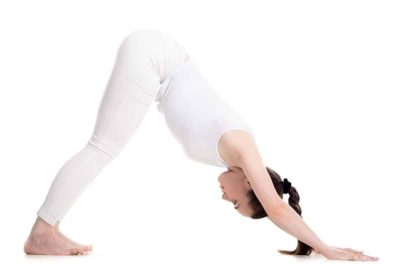 Image result for Downward dog at the wall