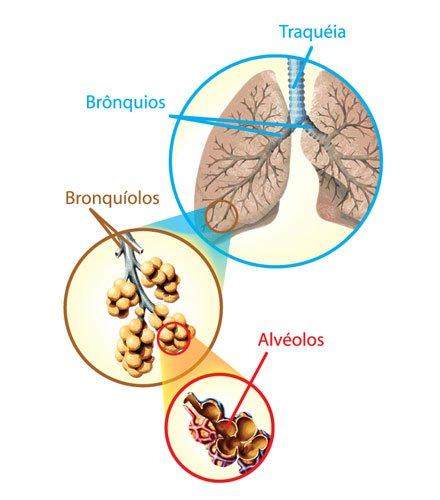 Teste Diagnóstico – Circulação do ar (1) – Soluções