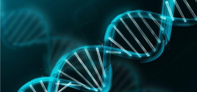 O Conhecimento Genético