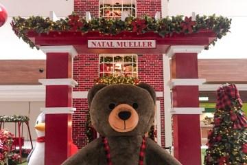 Urso Caramelo está de volta ao Shopping Mueller