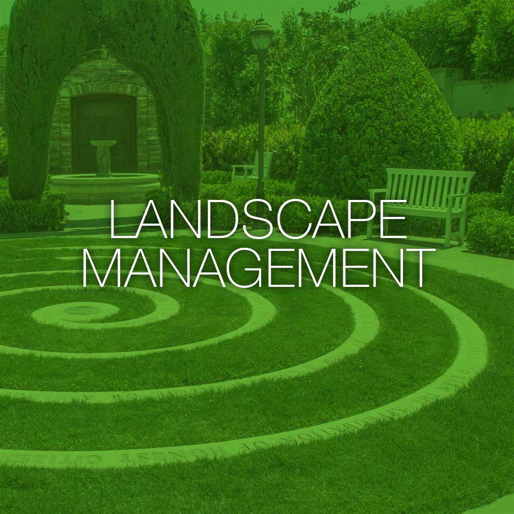 Landscape Qualifications Design
