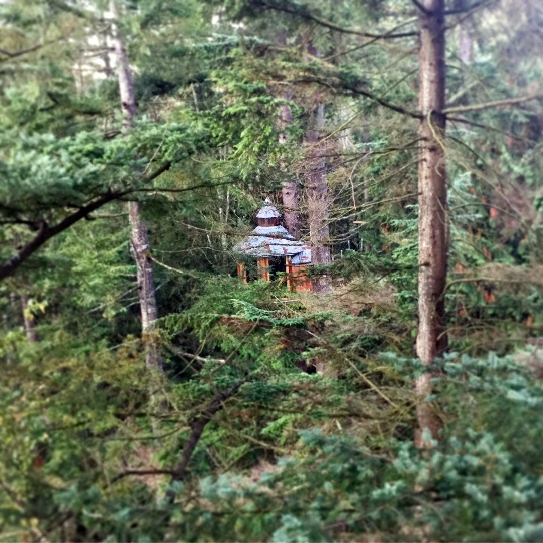 treehouse03