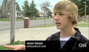 approached by goat