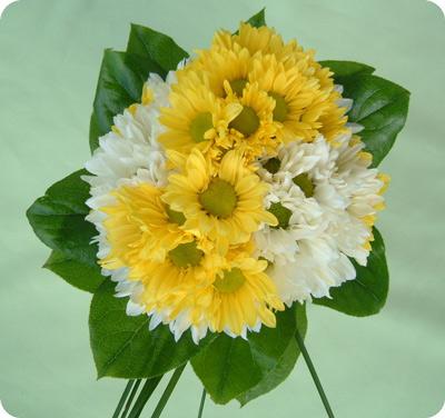 Yellow & White Daisies
