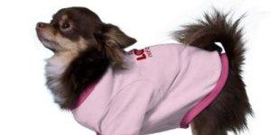 Valentine-Doggie-Shirts