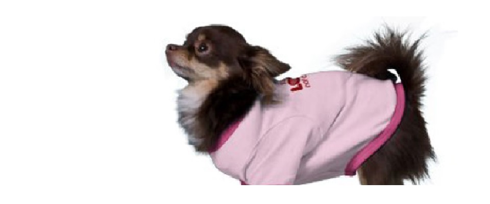 Darling Doggie Shirts for Valentine's Day