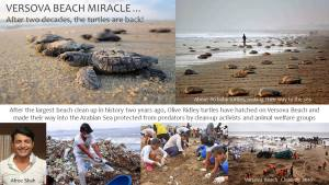 "How ""even"" Beach Cleanups make A difference"