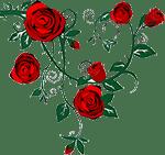logo_larose