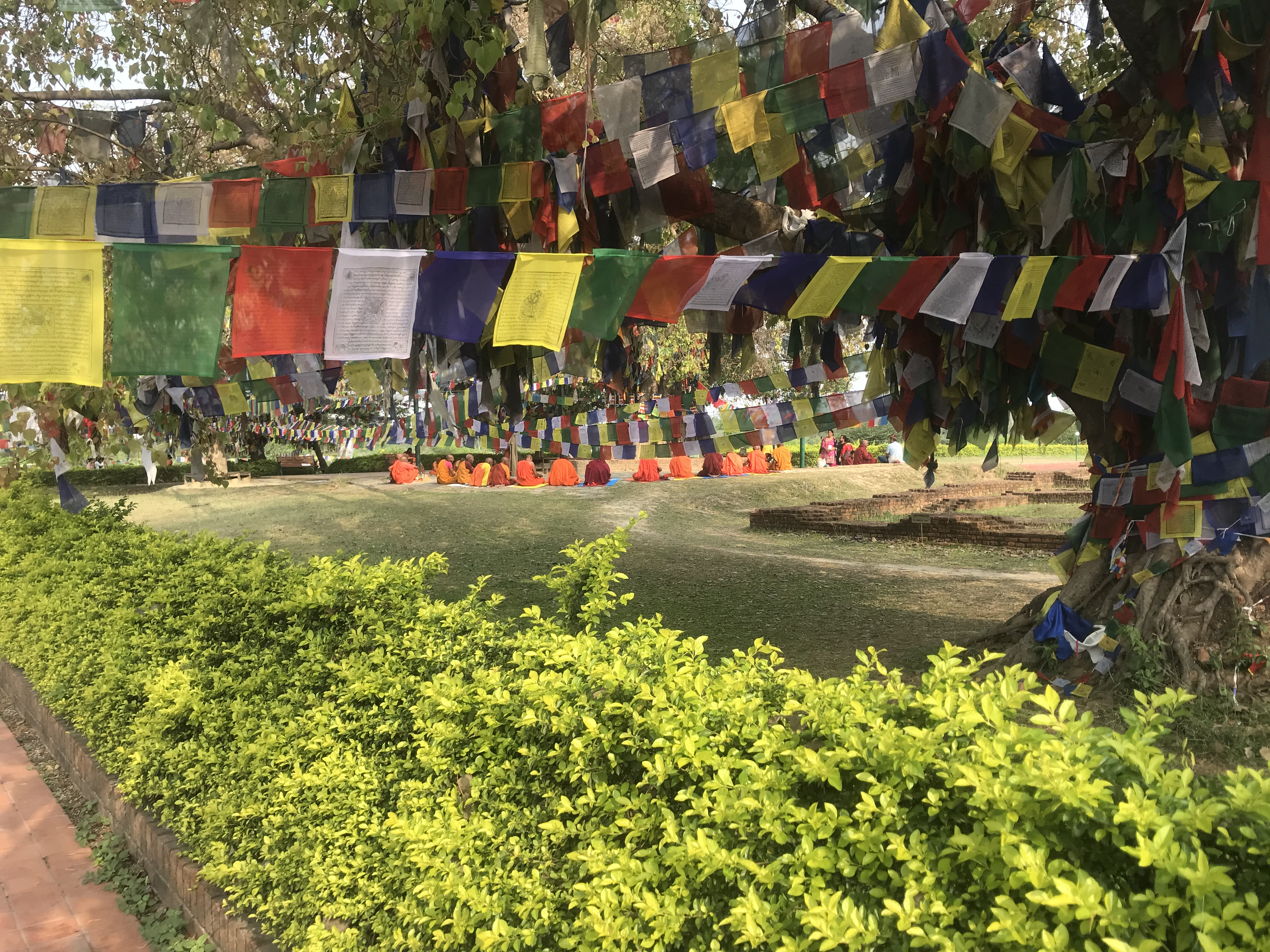 The Birth Place of the Buddha – Ben Around the World Diary – Day 102 – 8 April 2019
