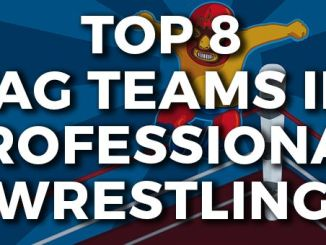 Top 8 Tag Teams in Professional Wrestling