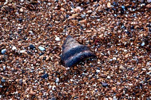 A piece of cast iron from West Pier