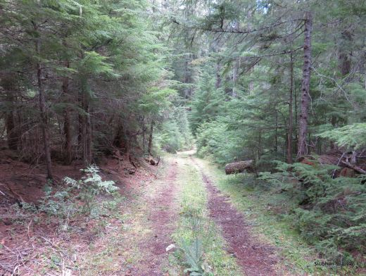 Santiam Wagon Road