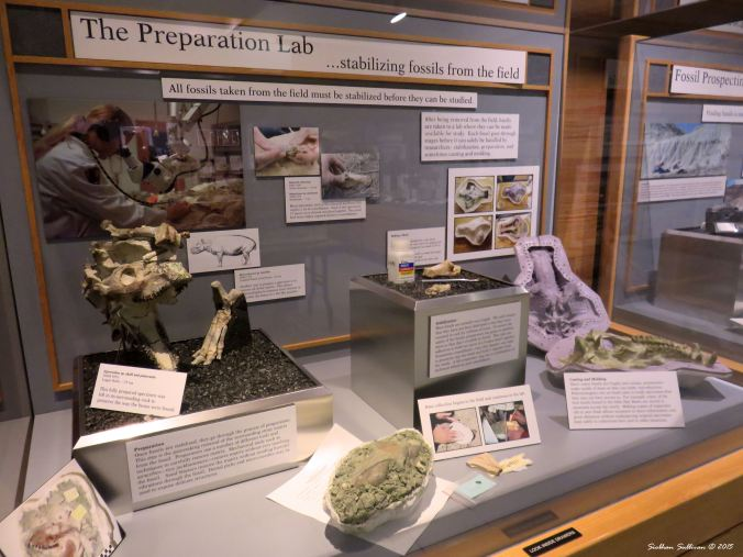 Thomas Condon Paleontology Center