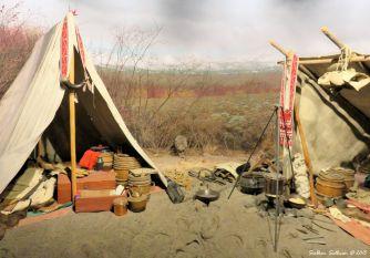 Trapper's Camp