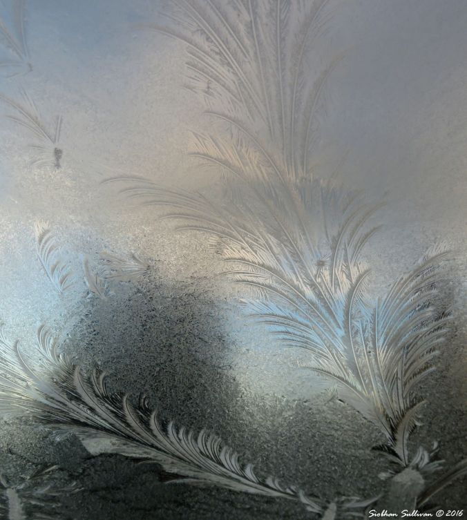 Windshield ice