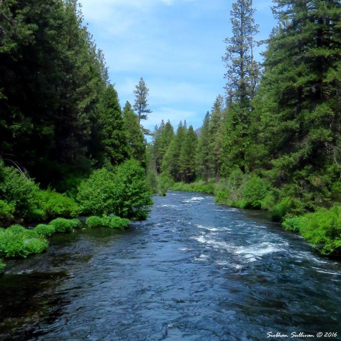 Metolius River, Oregon