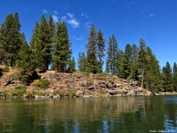 Kayaking on the Deschutes River 10Sept2016