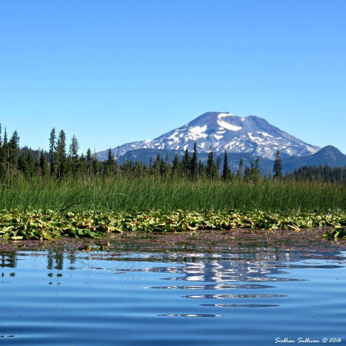 Hosmer Lake Reflections 10Aug2016