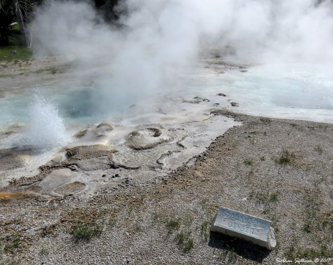 Spasmodic Geyser, Yellowstone National Park, WY 3June2015
