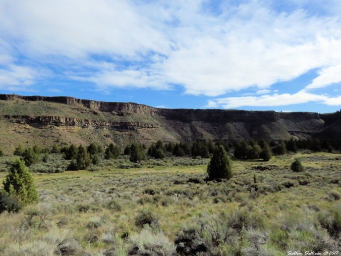Otter Bench hike, Crooked River, Oregon 17April2017