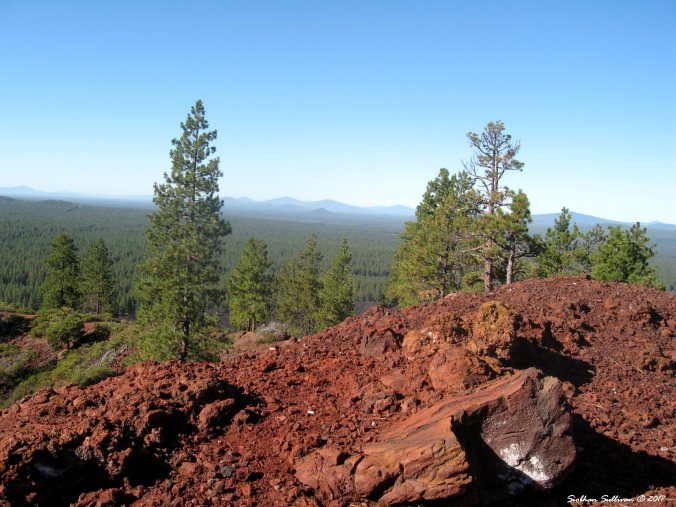 Lava rock red. The view from Lava Butte 4Sept2014