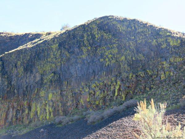 Lichen covered cliffs Trout Creek trail 3Apr2017