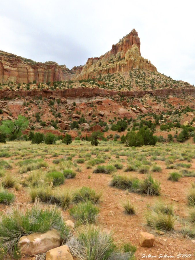 Formation along the Scenic Drive in Capitol Reef National Park, Utah 5May2017