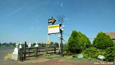 Canutts Gem and Rockshop roadside sign 31August2017
