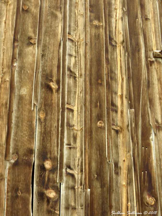 Weathered Barnwood at River Ranch Barn Oregon 30March2018