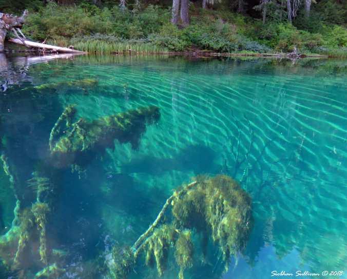 Clear Lake Underwater Oregon 30August2016