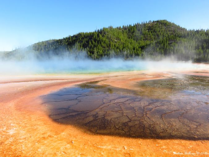 Grand Prismatic Spring Circles, Yellowstone National Park, WY 3June2018