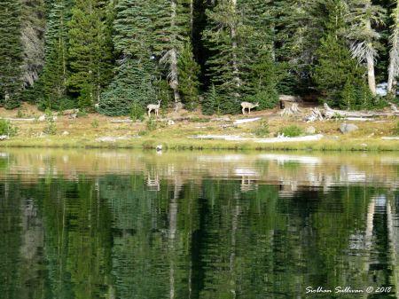 Layers Three Creek Lake 24September2017
