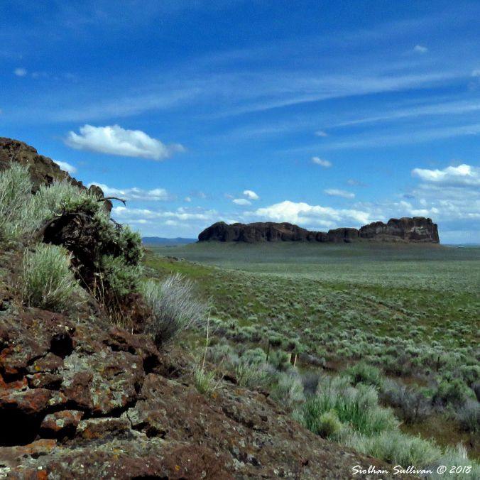 Fort Rock Look Up 4 10June2016