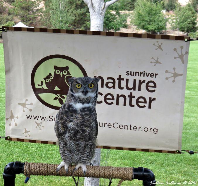 Visiting Sunriver Nature Center, Sunriver, Oregon