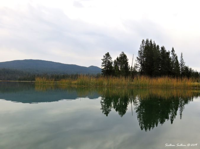 Reflection at Little Lava Lake, Oregon 28September2017