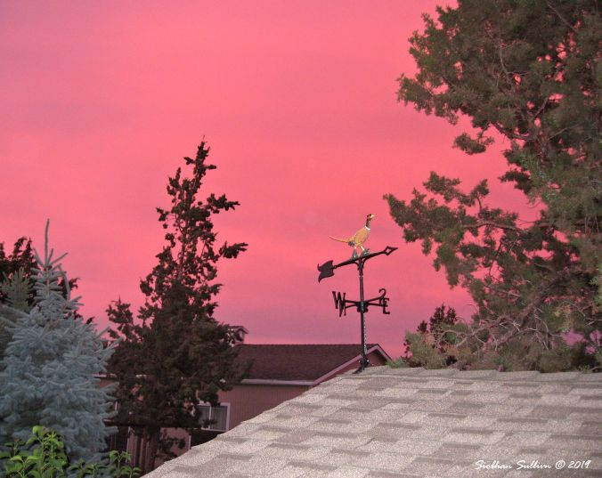 Unique sights sky colored by fires nearby, Bend, OR 2July2014