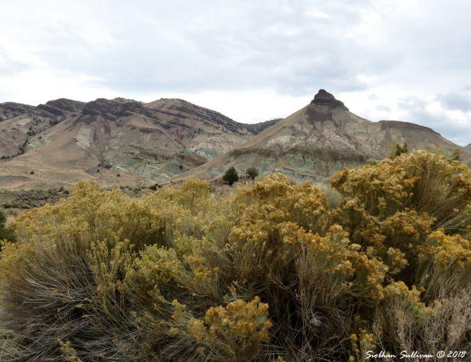 Painted Hills landscape near Kimberly, Oregon 26October2018
