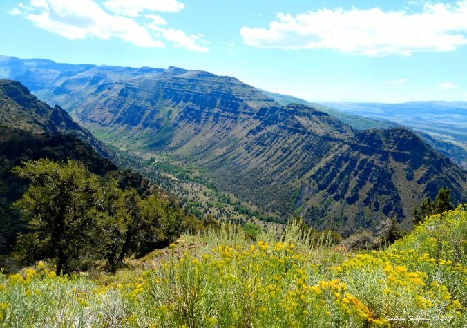 Big Indian Gorge, Steens Mountain, Oregon 28 August 2019