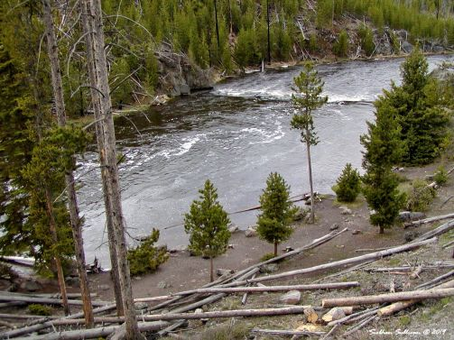 Firehole swimming hole, in Yellowstone National Park, Wyoming 2011
