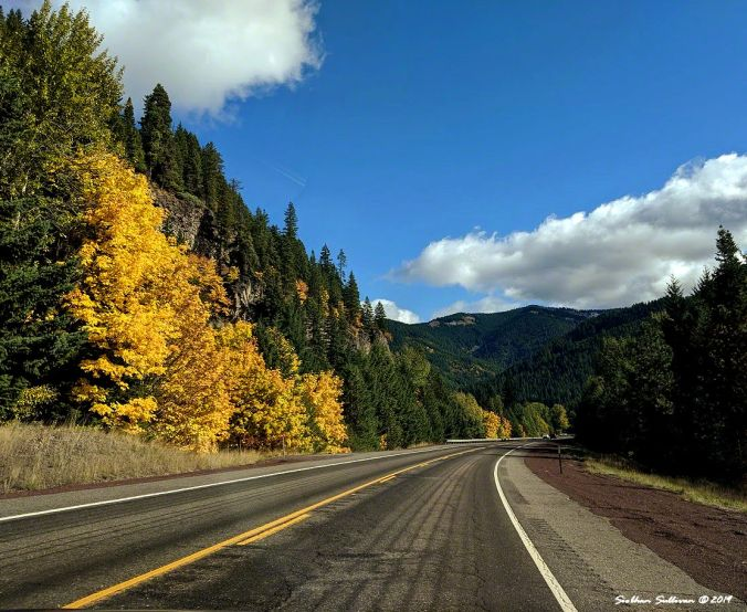Noticing the lines on the way to Hood River, Oregon 10October2019