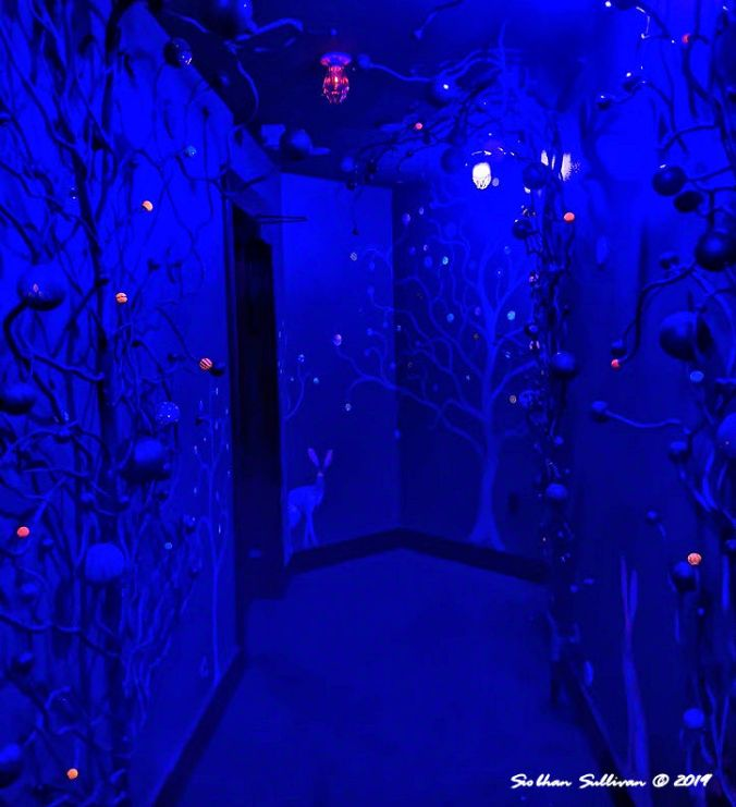Secret blue views in hidden rooms, McMenamins, Bend, Oregon 19 January 2020
