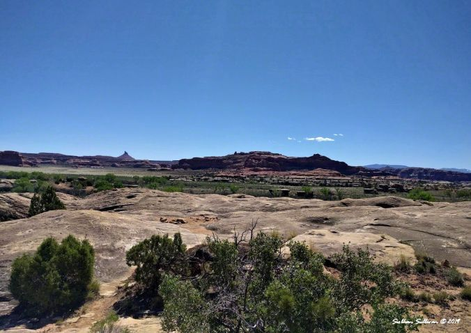 Scenic view from Cave Spring Trail in Canyonlands National Park, Utah May2017