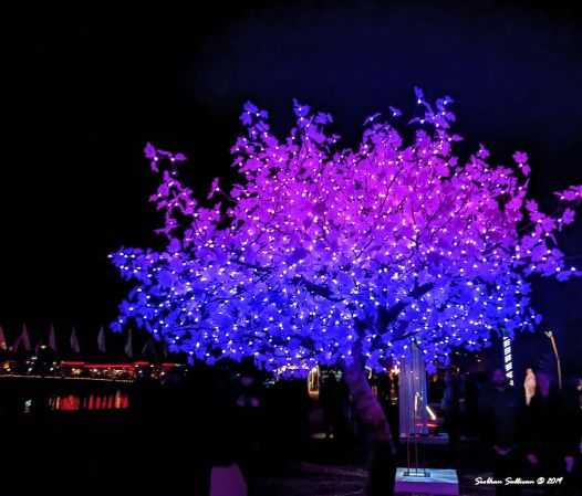 Lighted tree sculpture at Oregon WinterFest February 202