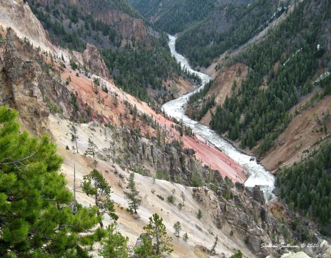 Grand Canyon of the Yellowstone 13 June 2011