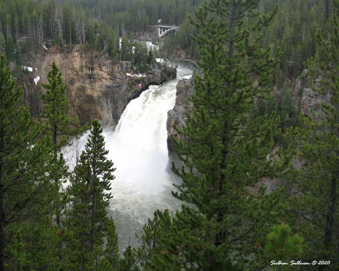 Upper Falls, Yellowstone National Park 13 June 2011